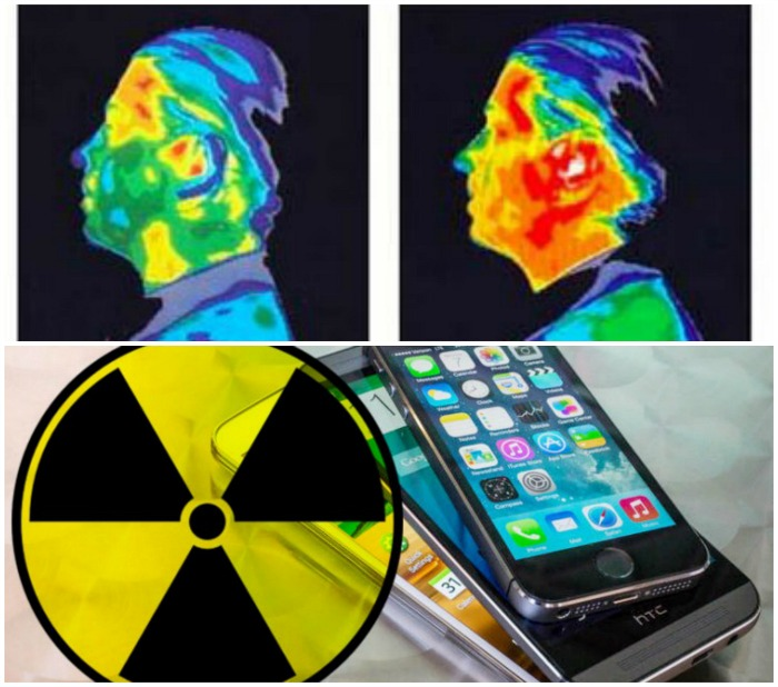 Mobile Phone Signal Radiation Effect on human Body